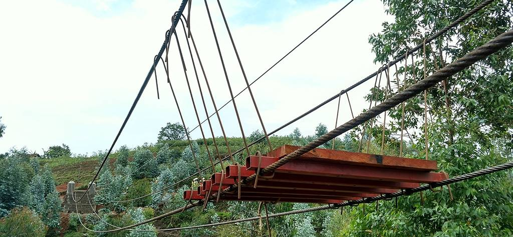 suspended bridge over river with trees in background in the jungle bridge with lots of rope bridge being built